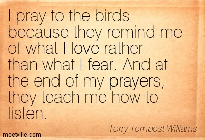 Quotation-Terry-Tempest-Williams-fear-love-prayer-Meetville-Quotes-225161