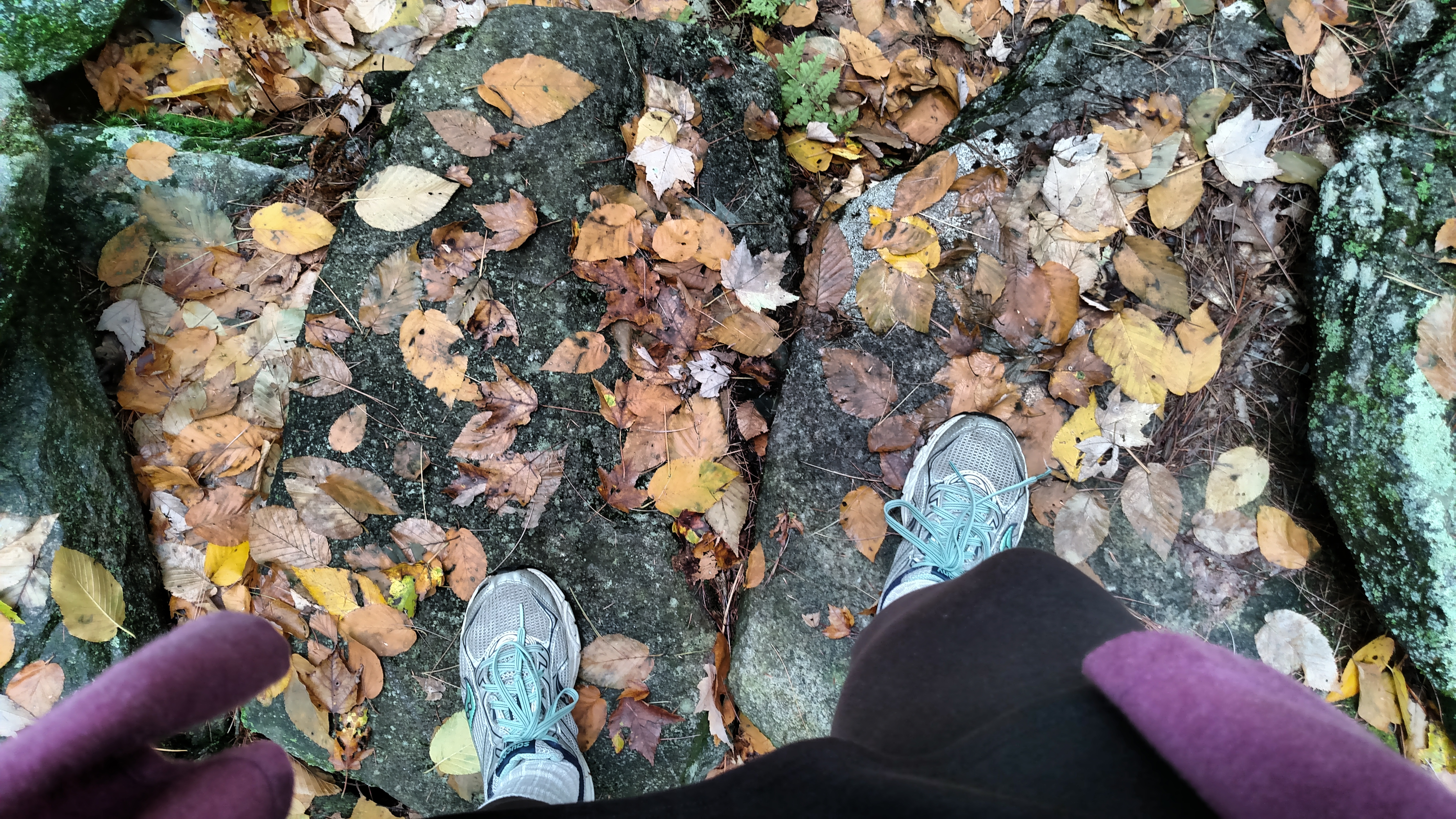 yep: them's my feet, walking in the woods before i left this afternoon