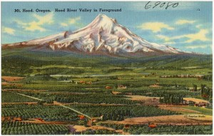 640px-Mt._Hood,_Oregon._Hood_River_Valley_in_foreground_(69080)
