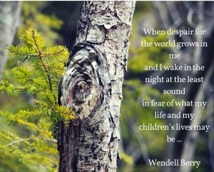 When despair for the world grows in me and I wake in the night at the least sound in fear of what my life and my children's lives may be,(1)